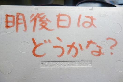 DSC06139.jpg